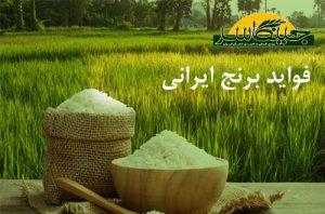 فواید برنج ایرانی